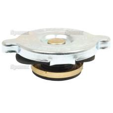 Kühlerdeckel für Case IH MXM175 MXM190 Fiat G170 G190 G210 G240 Ford / New Holland TW5-35