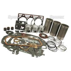 Motorüberholsatz für Case IH 248 3220 484 485 485XL 495 495XL 523 553 633 640