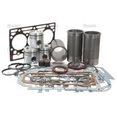 Motorüberholsatz für Case IH / International Harvester 454 - Motorbaureihe D179